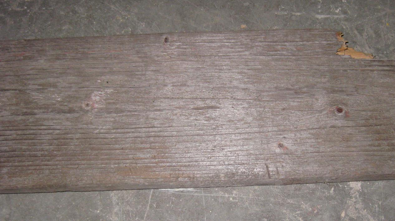Treibholzbrett für Garderobe