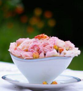 Rosenzeit – die Königinnen der Blumen duften so herrlich