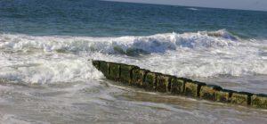 Unsere große Liebe: das Meer