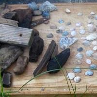 Treibholz und Strandgut sammeln, eine gute Idee um anschließend Nachhaltiges zum Wohnen zu basteln